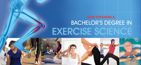 Kinesiology And Exercise Science online editing company